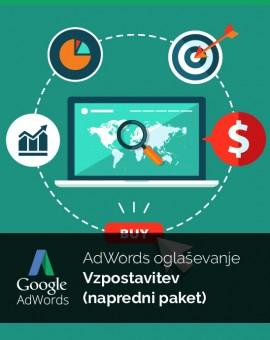 Vzpostavitev oglaševanja (napredni paket) - Google Adwords