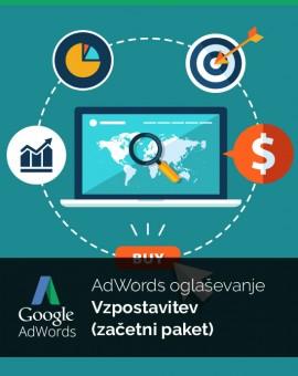 Vzpostavitev oglaševanja (začetni paket) - Google Adwords