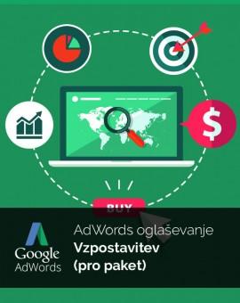 Vzpostavitev oglaševanja (pro paket) - Google Adwords
